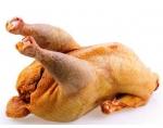 ОПАЛЕННАЯ Домашняя курица